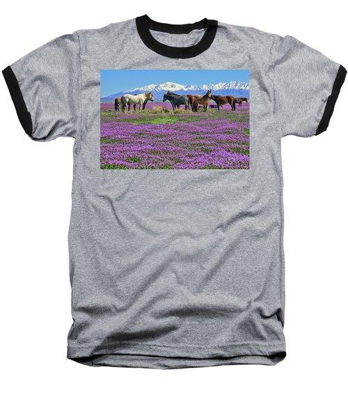 Onaqui Spring Baseball T-Shirt