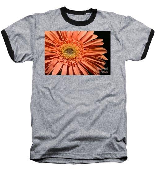 Orange Gerbera Daisy Baseball T-Shirt