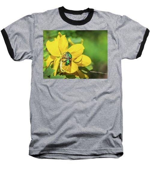 Orchard Bee Baseball T-Shirt