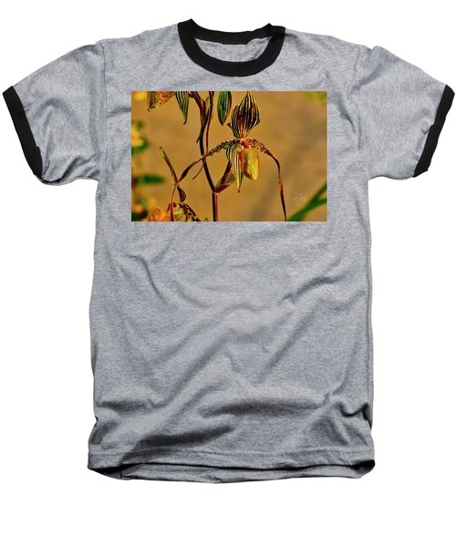 Orchid Study Eight Baseball T-Shirt