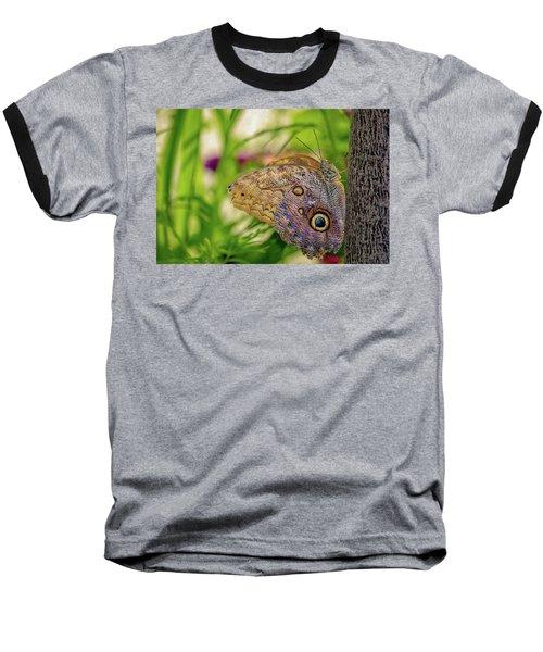 Owl Butterfly Baseball T-Shirt