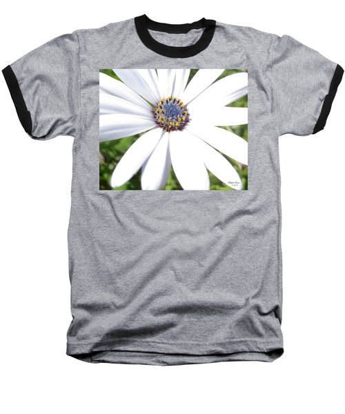 Page 13 From The Book, Peace In The Present Moment. Daisy Brilliance Baseball T-Shirt