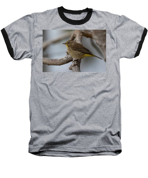 Palm Warbler Baseball T-Shirt
