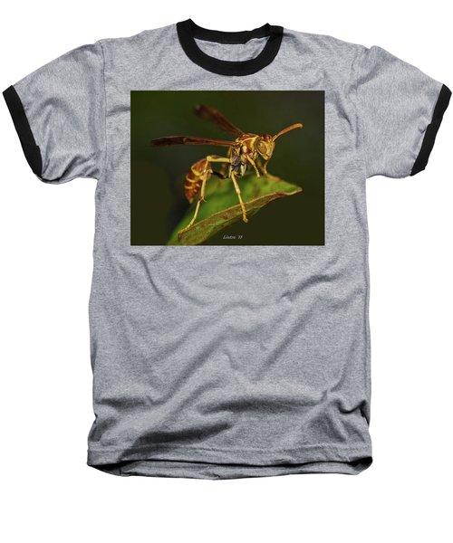 Paper Wasp Baseball T-Shirt
