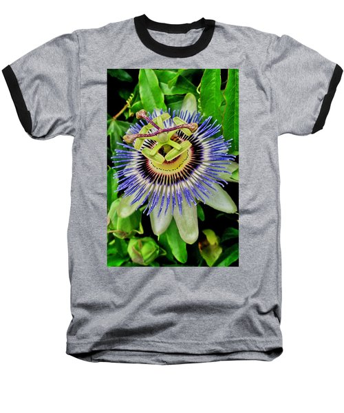 Passion Flower Bee Delight Baseball T-Shirt