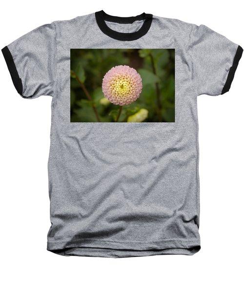 Petite Pink Baseball T-Shirt