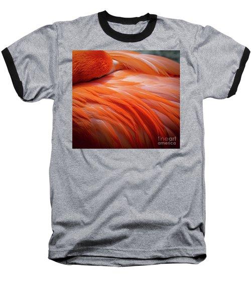 Pink Feathers Baseball T-Shirt