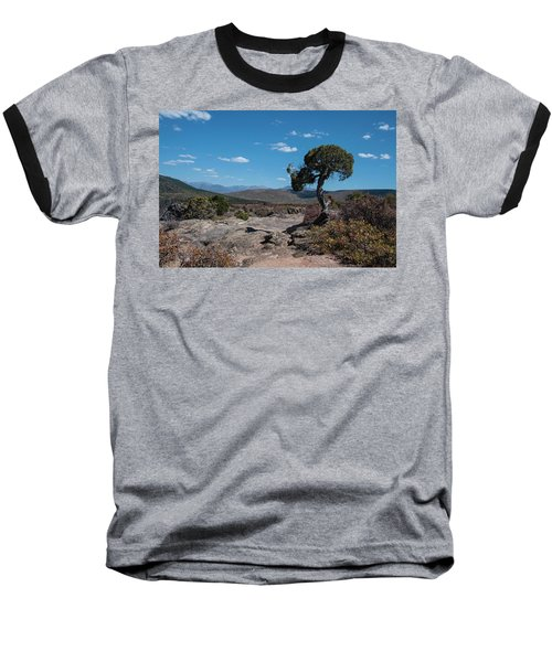 Pinyon Pine With North Rim In Background Black Canyon Of The Gunnison Baseball T-Shirt