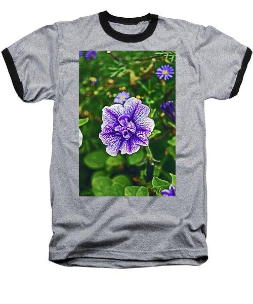 Pitlochry.  Purple Petunia. Baseball T-Shirt
