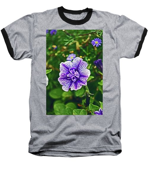 Pitlochry.  Purple Petunia. Baseball T-Shirt