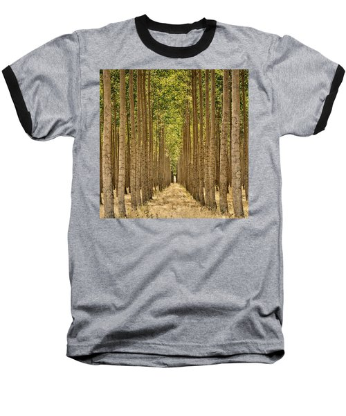 Poplars In Boardman Baseball T-Shirt