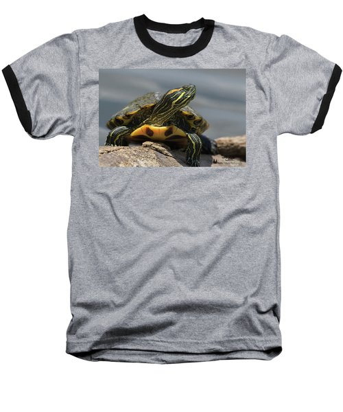 Portrait Of A Turtle Baseball T-Shirt