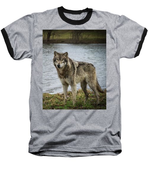 Posing By The Water Baseball T-Shirt