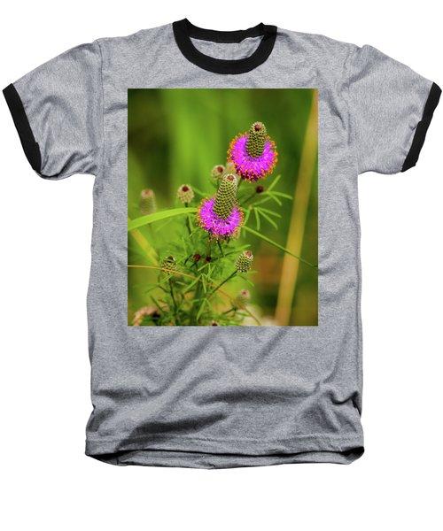 Prairie Clover Baseball T-Shirt