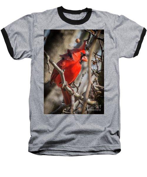 Pretty Boy Baseball T-Shirt