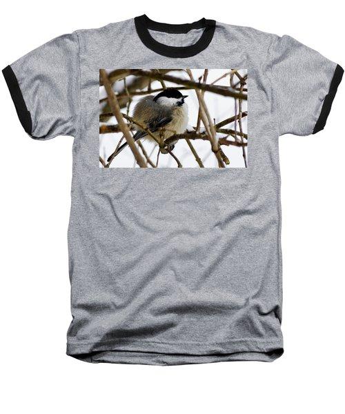 Puffed Up Baseball T-Shirt