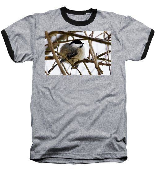Puffed Up Baseball T-Shirt