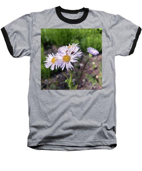Purple Fleabane 5 Baseball T-Shirt