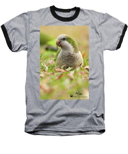 Quaker Parrot #3 Baseball T-Shirt
