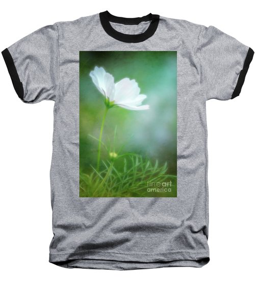 Radiant White Cosmos In The Evening Light Baseball T-Shirt