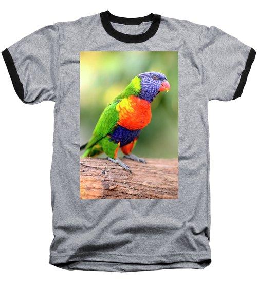 Rainbow Lorikeet Baseball T-Shirt