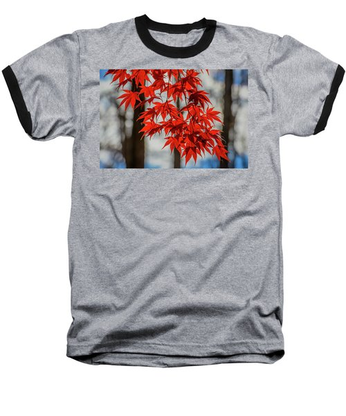 Red Leaves Baseball T-Shirt