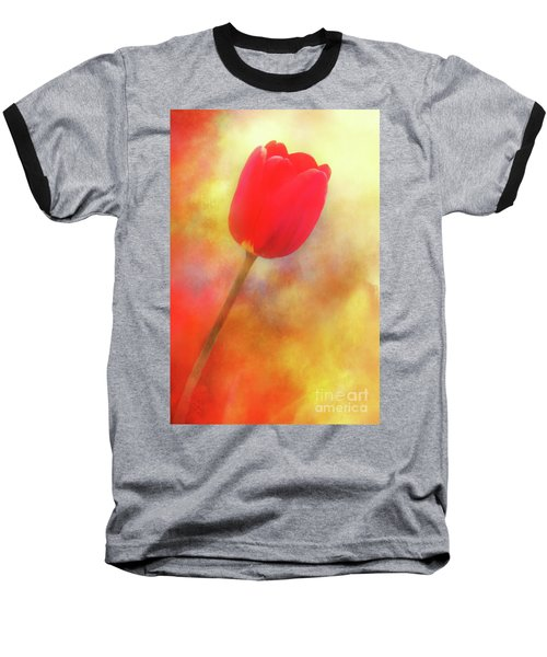 Red Tulip Reaching For The Sun Baseball T-Shirt