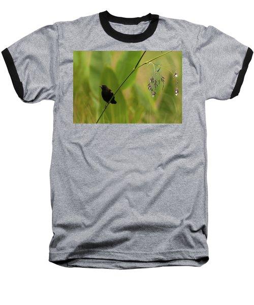 Red-winged Blackbird On Alligator Flag Baseball T-Shirt