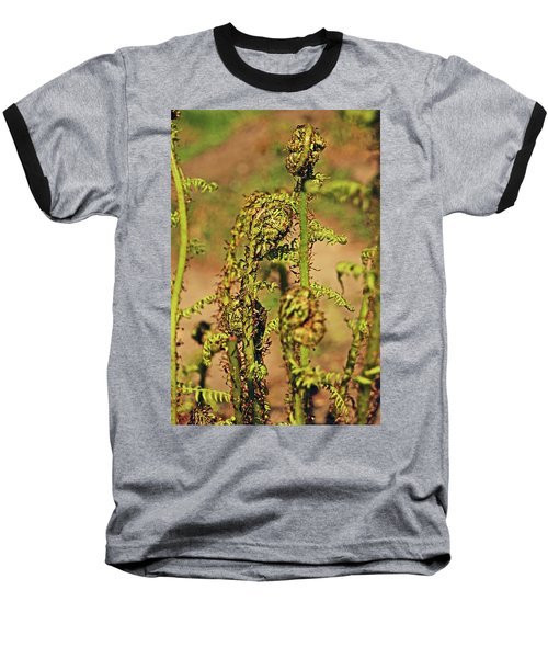 Rivington Terraced Gardens. Fern Frond. Baseball T-Shirt