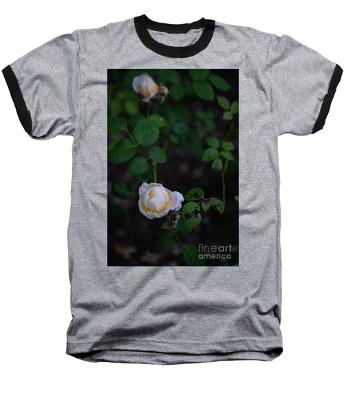 Rose Collection Baseball T-Shirt