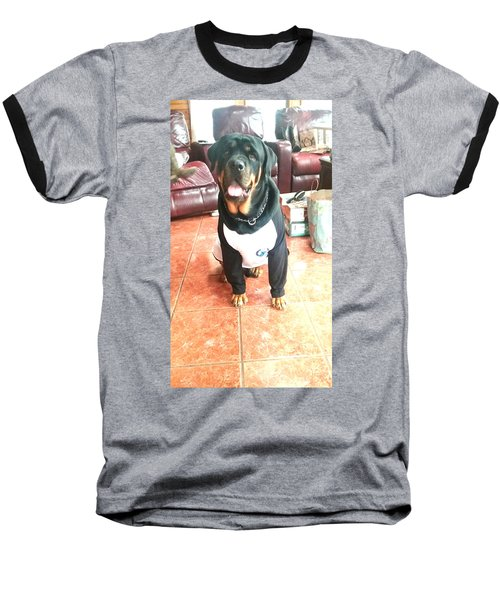 Rottie Baseball T-Shirt