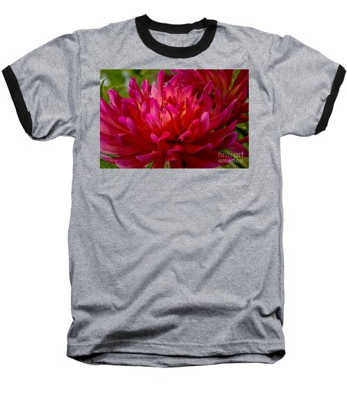 Ruby Red Dahlia Baseball T-Shirt