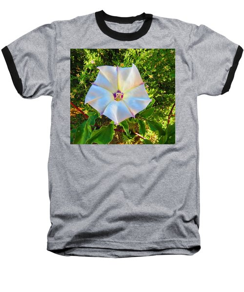 Baseball T-Shirt featuring the photograph Sacred Datura In The Golden Hour by Judy Kennedy
