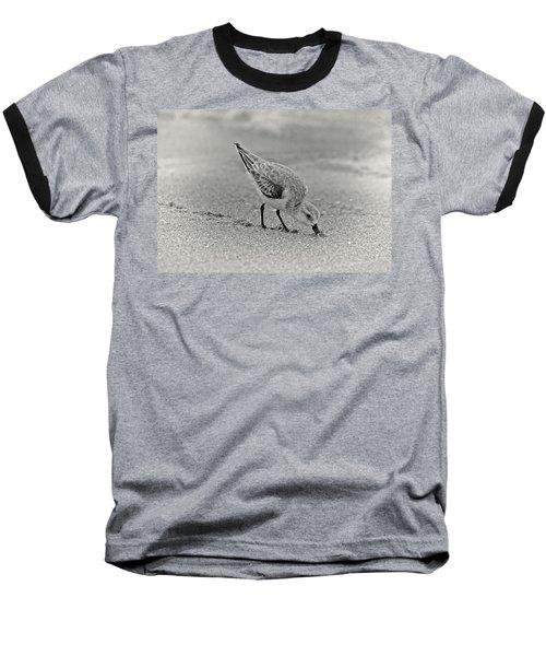 Sanderling Foraging For Food Baseball T-Shirt