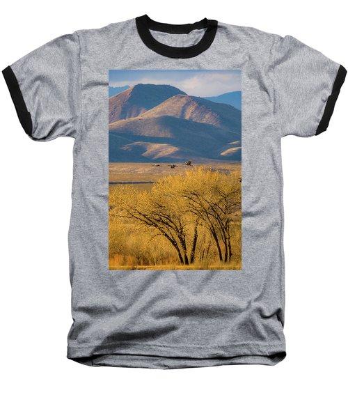 Sandhill Cranes Near The Bosque Baseball T-Shirt