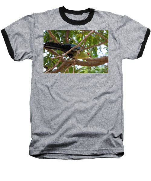 Schalow's Turaco Baseball T-Shirt