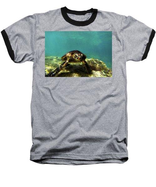 Sea Turtle  Baseball T-Shirt