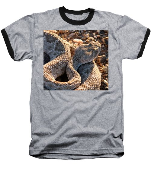 Baseball T-Shirt featuring the photograph Serpent Of The Southwest by Judy Kennedy