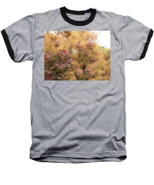 Smoke Bush  Baseball T-Shirt