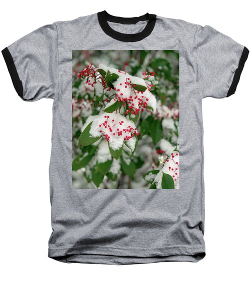 Snow Covered Winter Berries Baseball T-Shirt