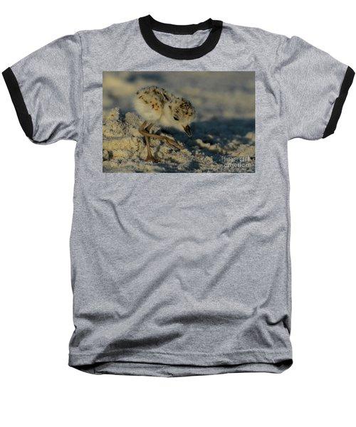 Snowy Plover On The Hunt Baseball T-Shirt