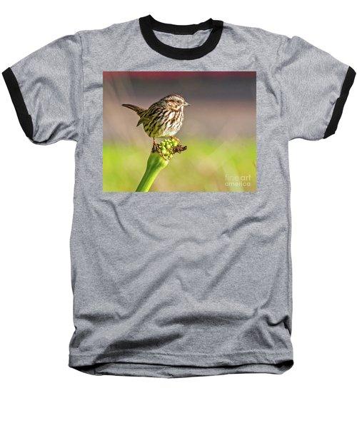Songster Perching Baseball T-Shirt