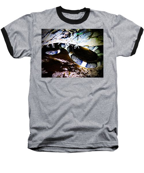 Baseball T-Shirt featuring the photograph Sonoran Desert Longnosed Snake by Judy Kennedy