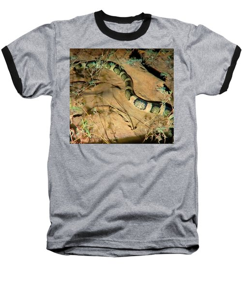 Baseball T-Shirt featuring the photograph Sonoran Desert Longnosed Snake Vintage by Judy Kennedy
