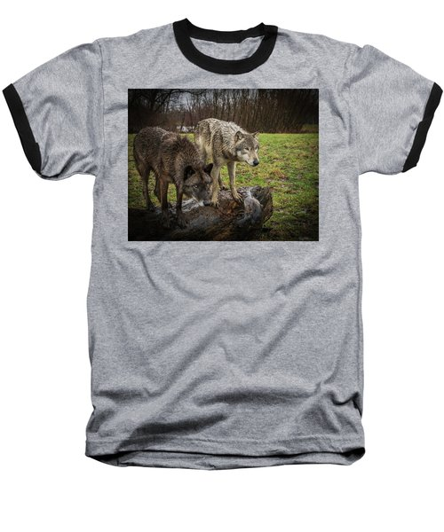 Sort Of Twins Baseball T-Shirt