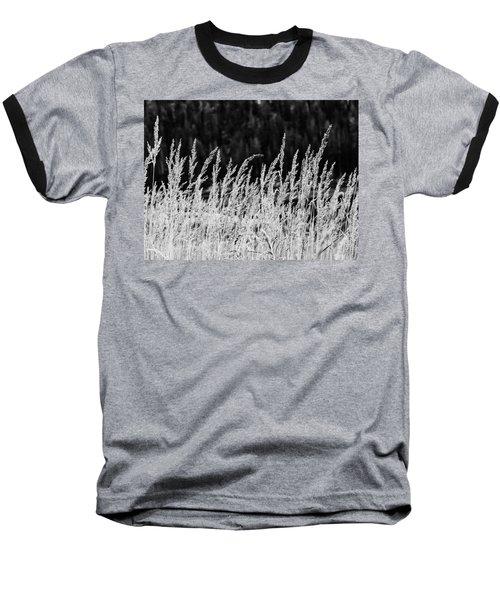 Spikes Baseball T-Shirt