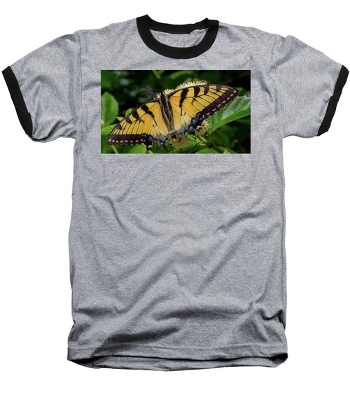Spread Your Wings Baseball T-Shirt