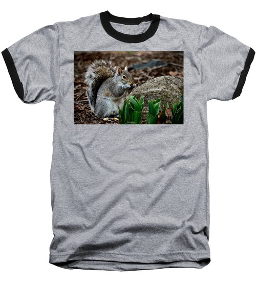 Squirrel And His Dinner Baseball T-Shirt