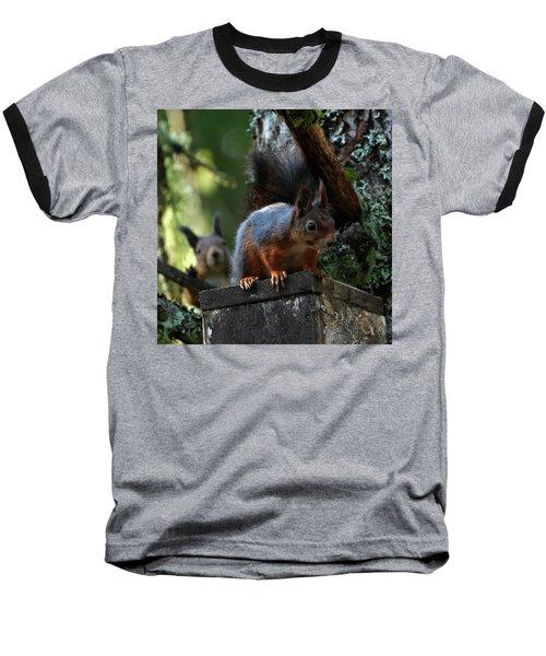 Squirrels Baseball T-Shirt