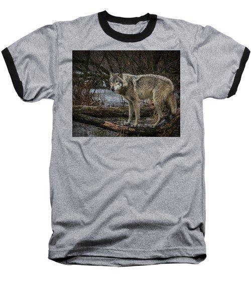 Stay Dry Baseball T-Shirt
